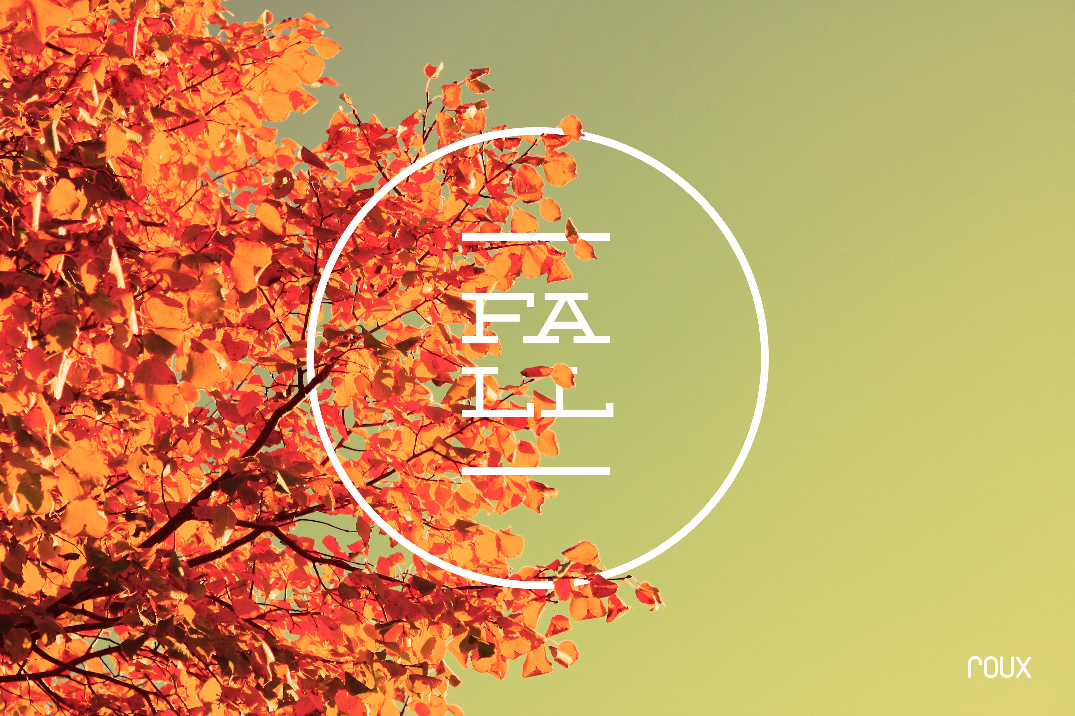 Fall wallpaper 4272x2848