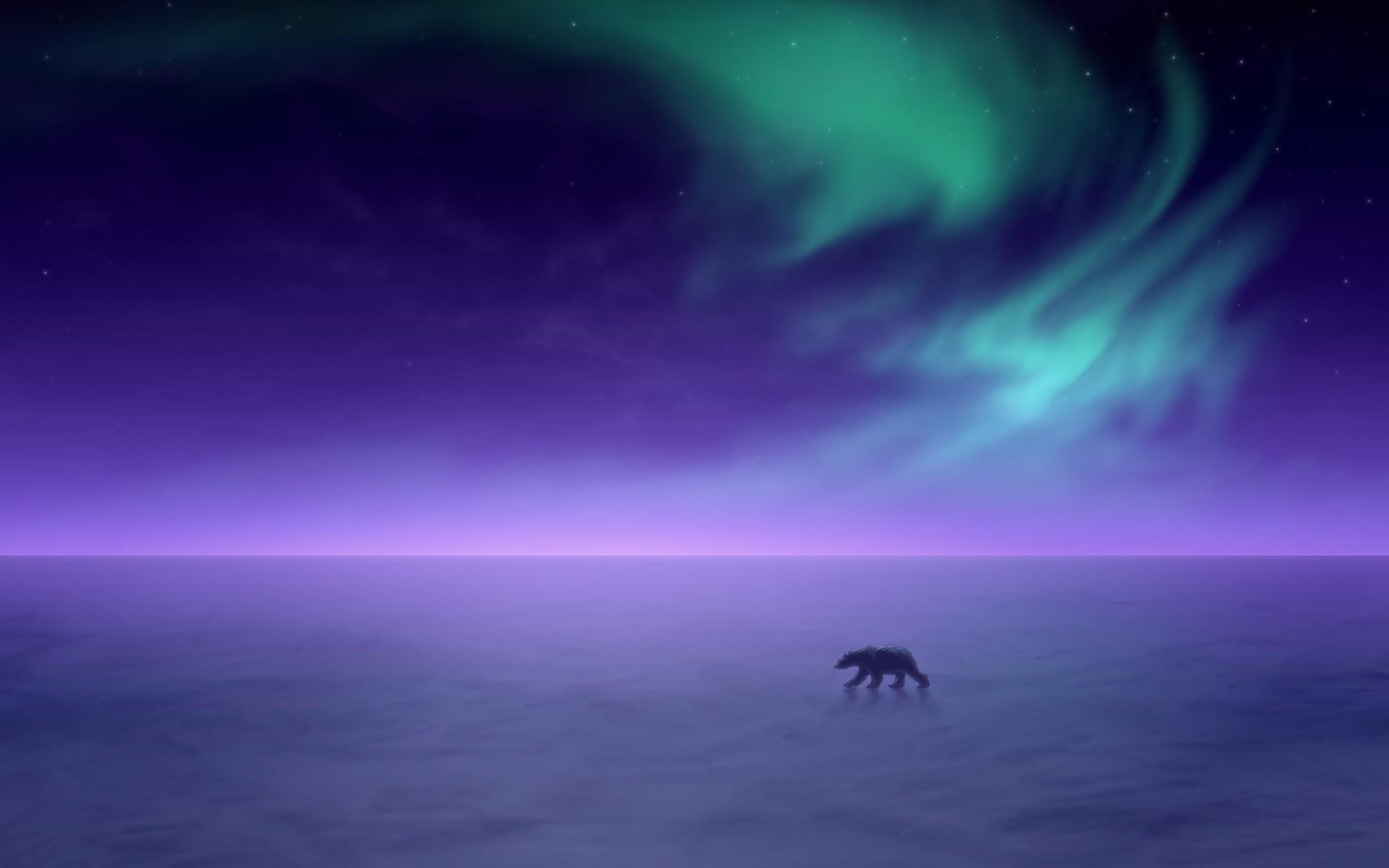 aurora borealis Alaska snow landscapes polar bears wallpaper ...