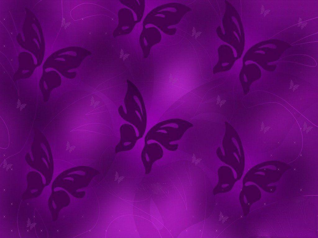 Purple butterfly wallpaper - photo#29