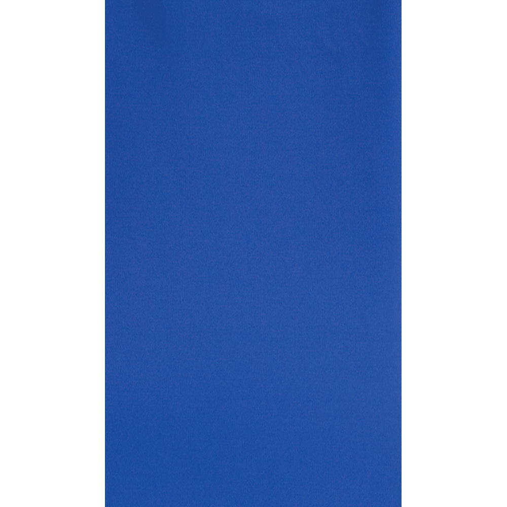 Botero 027 10x24 Muslin Background   Chroma Key Blue M0271024 1000x1000