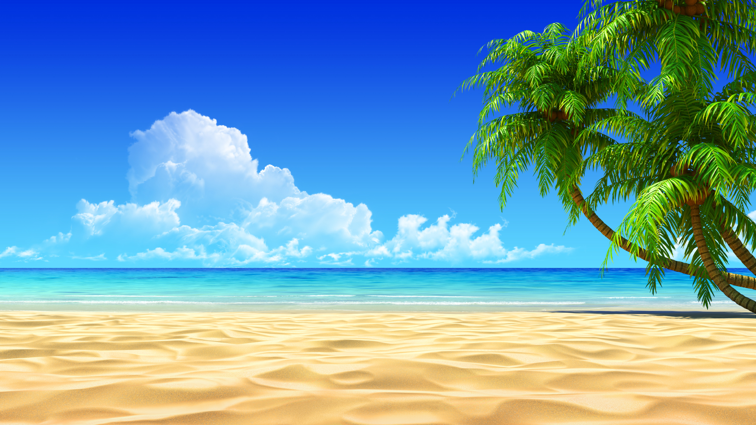 related beach pictures 2560x1440