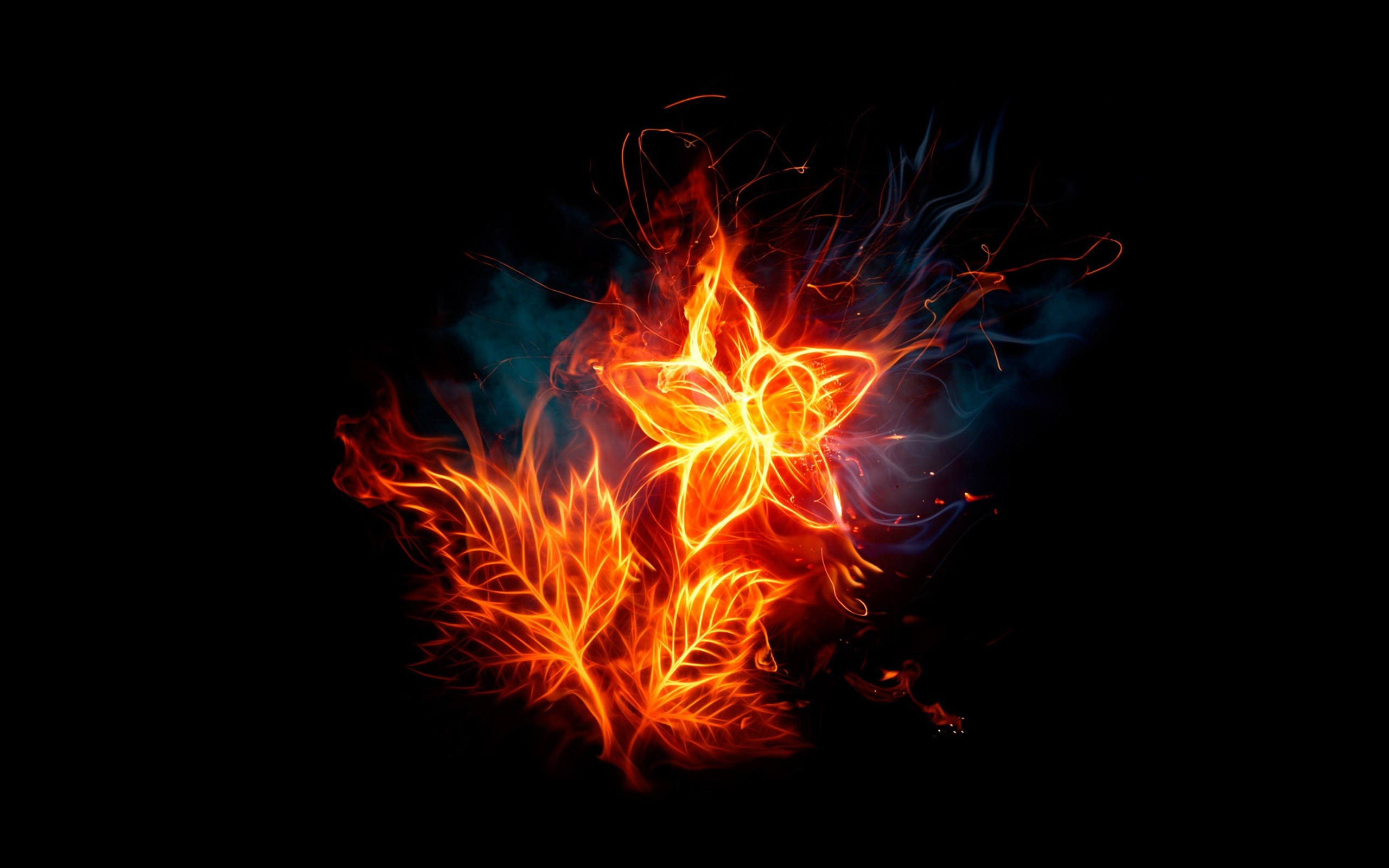 per day screensavers and wallpaper cool flames running in angel 2560x1600