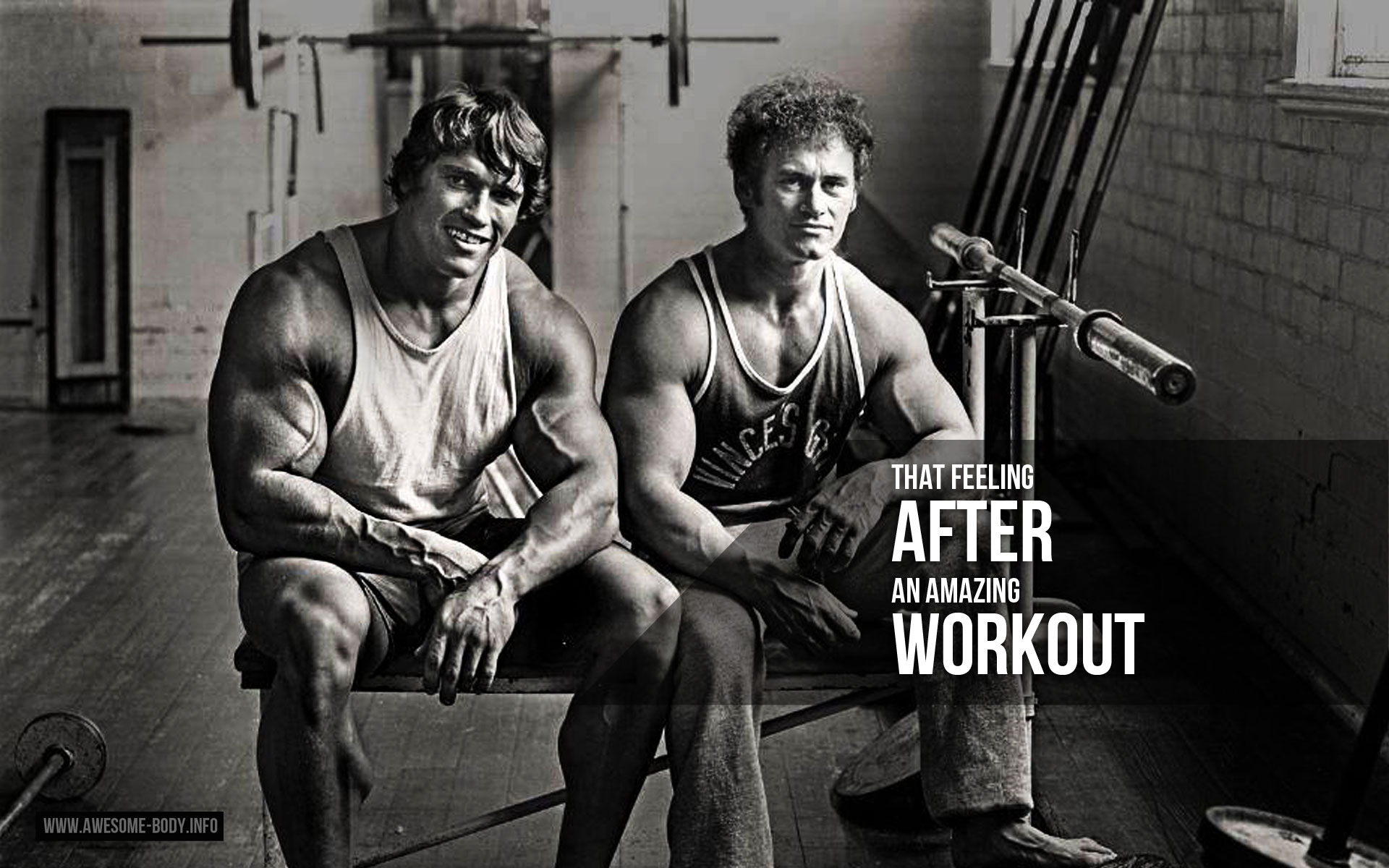 Arnold Schwarzenegger Workout Motivation Wallpapers 1920x1200