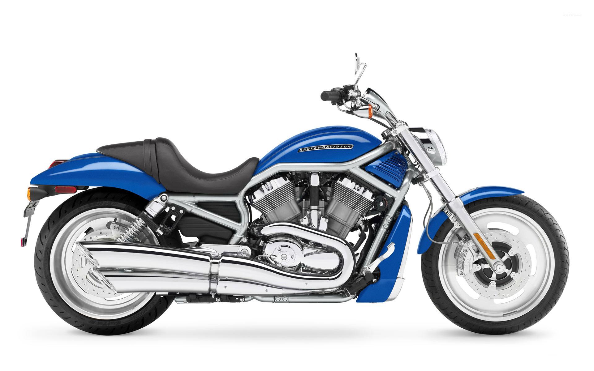 Davidson VRSCF V Rod Muscle wallpaper   Motorcycle wallpapers   9702 1920x1200