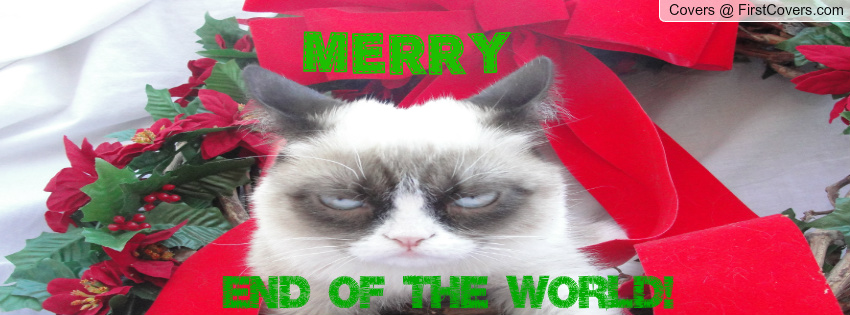 Grumpy Cat Christmas Facebook Profile Cover 982076 850x315