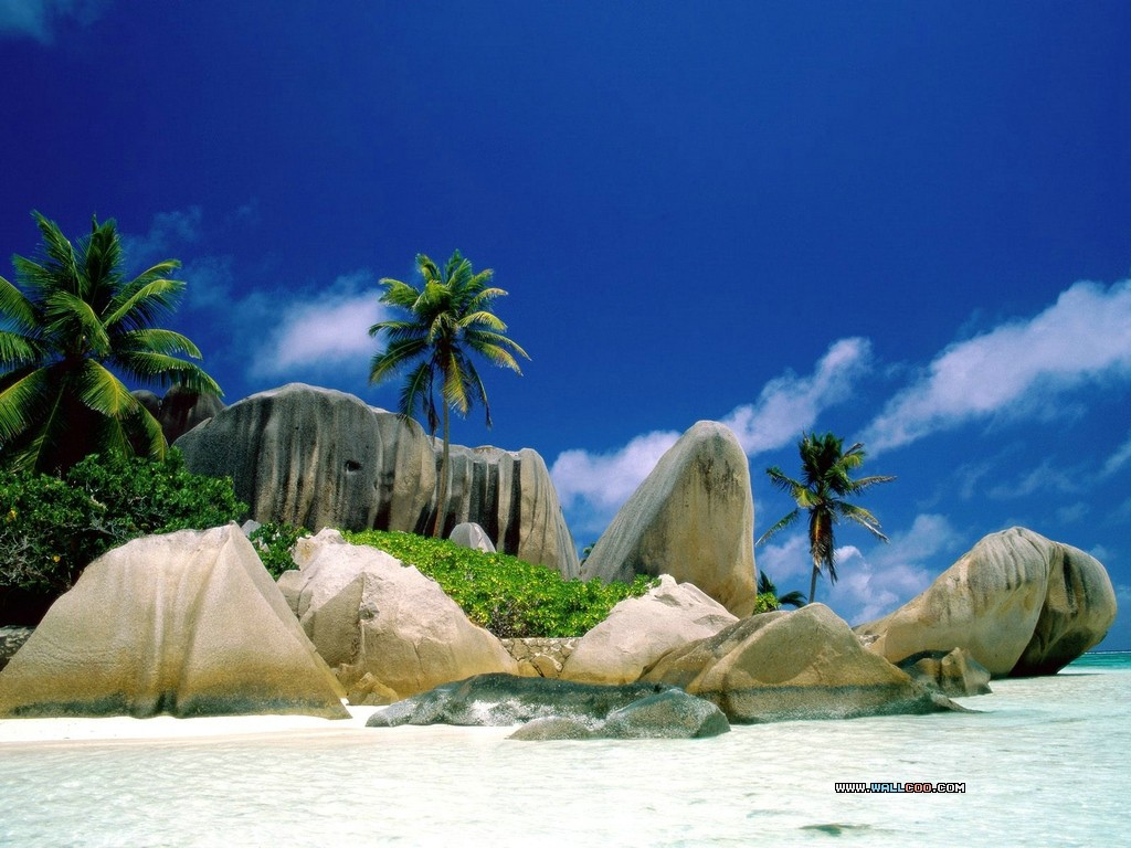 Tropical Island Wallpaper 8673 Hd Wallpapers in Beach   Imagescicom 1024x768