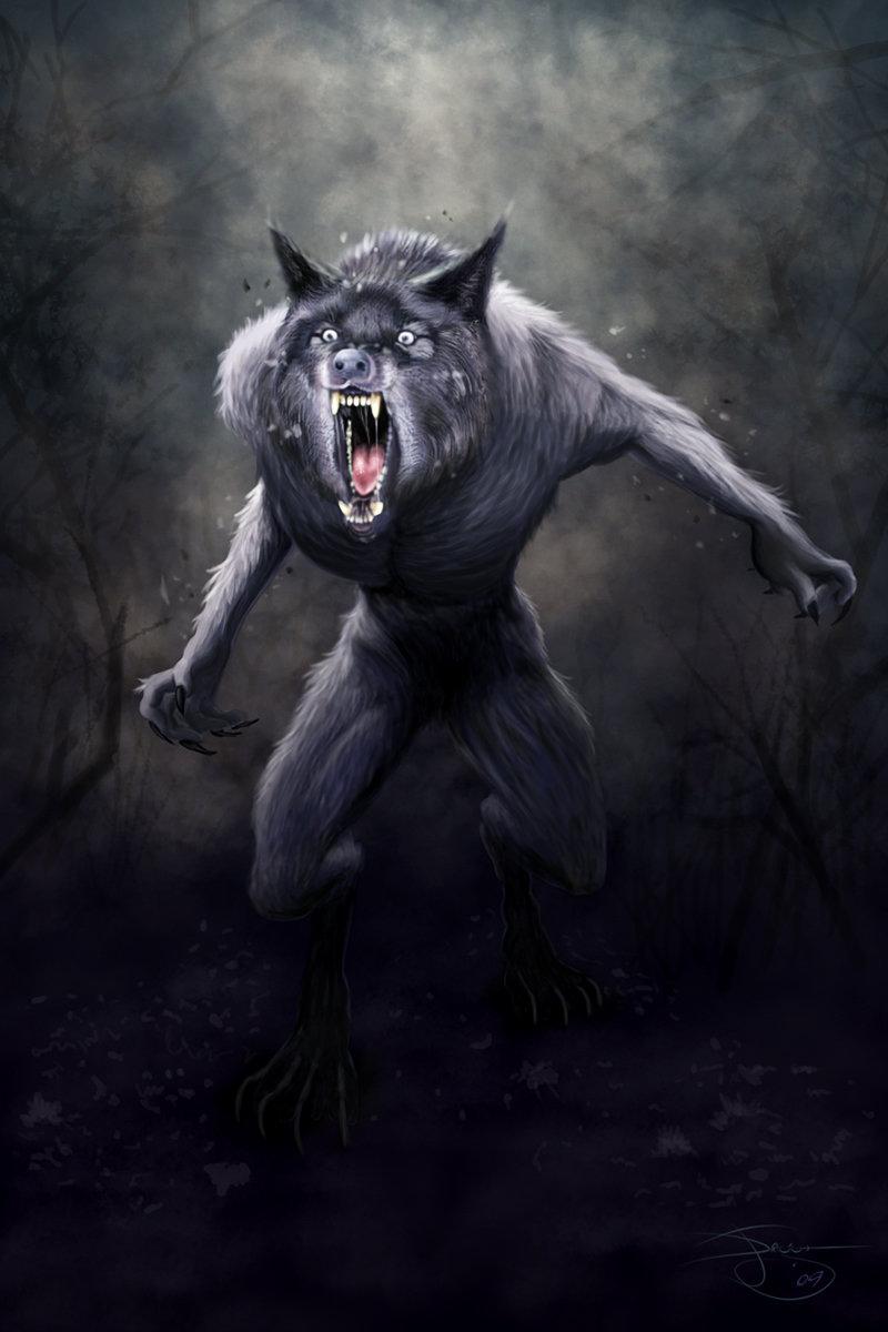 Ordinary everyday Werewolf by mdefender 800x1200