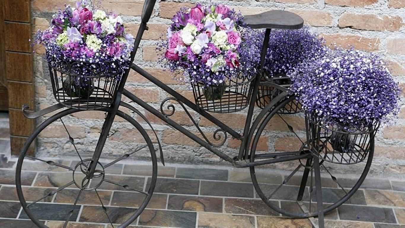 bicycles with flowers wallpaper - photo #4