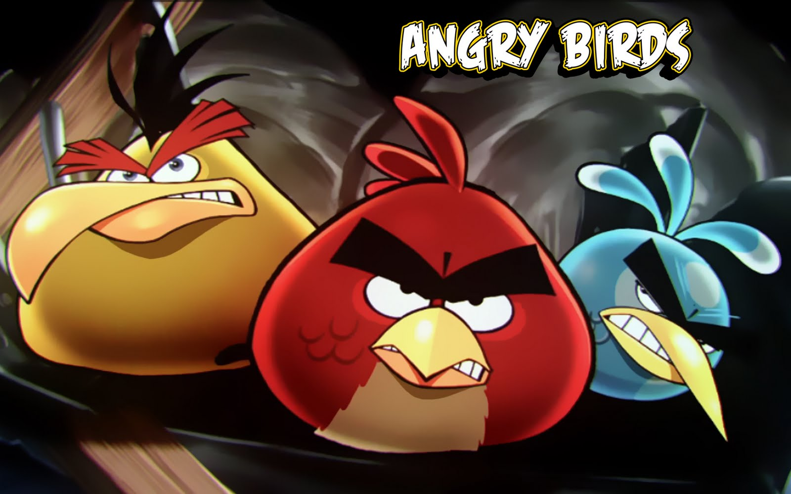 ANGRY BIRDS CUTE HD WALLPAPERS HD WALLPAPERS 1600x1000