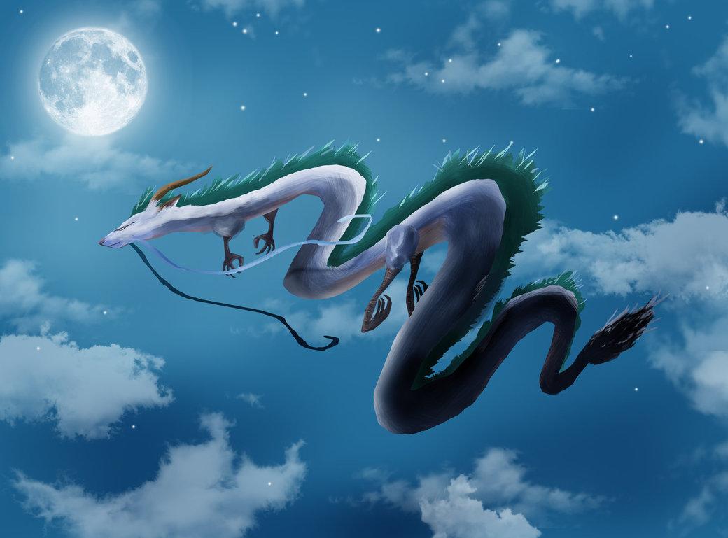 Free Download Spirited Away Haku Fan Art By Tacosauceninja 1040x769 For Your Desktop Mobile Tablet Explore 70 Haku Wallpaper Yowane Haku Wallpaper