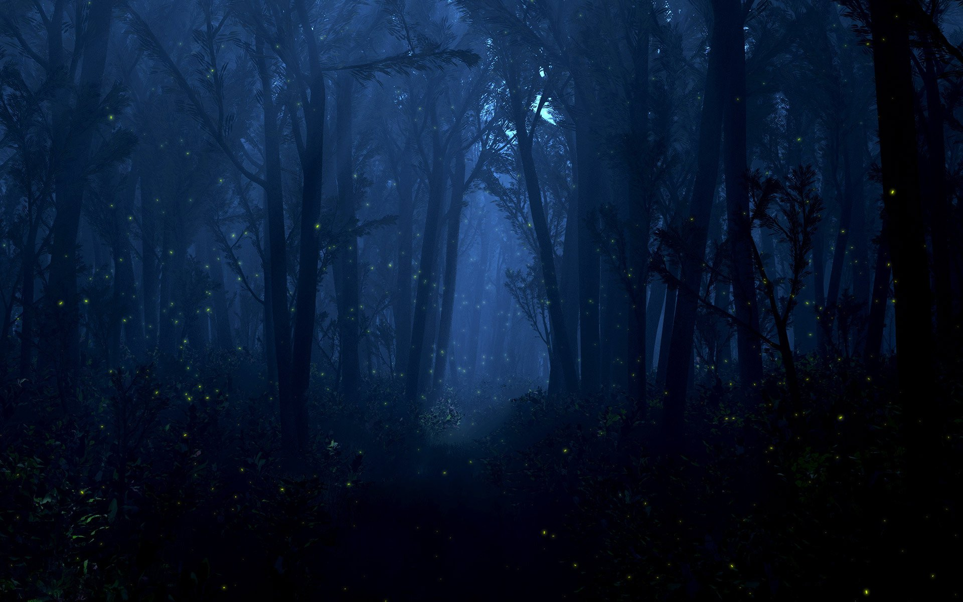 Free Download Night Forest 147 Wallpapers 1920x1200 For