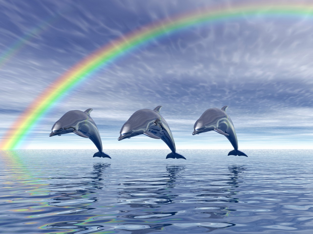 Dolphin Backgrounds download on the digitalimagemakerworldcom 1280x960