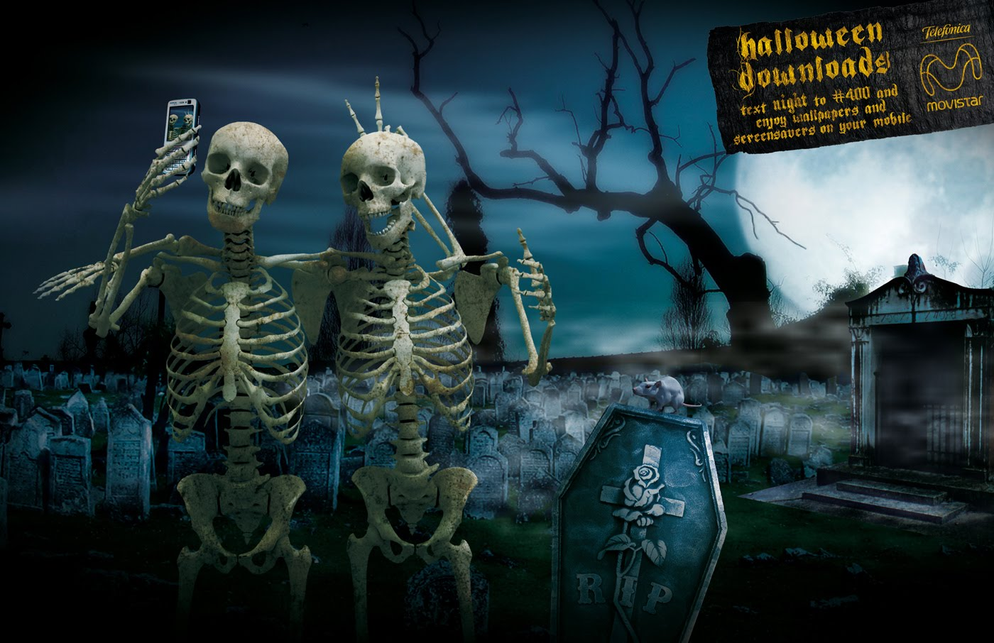 halloween skeleton wallpaper - photo #1