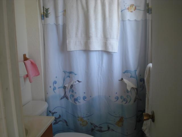 dolphin shower curtain bathroom Phoenix Arizona home house real estate 640x480