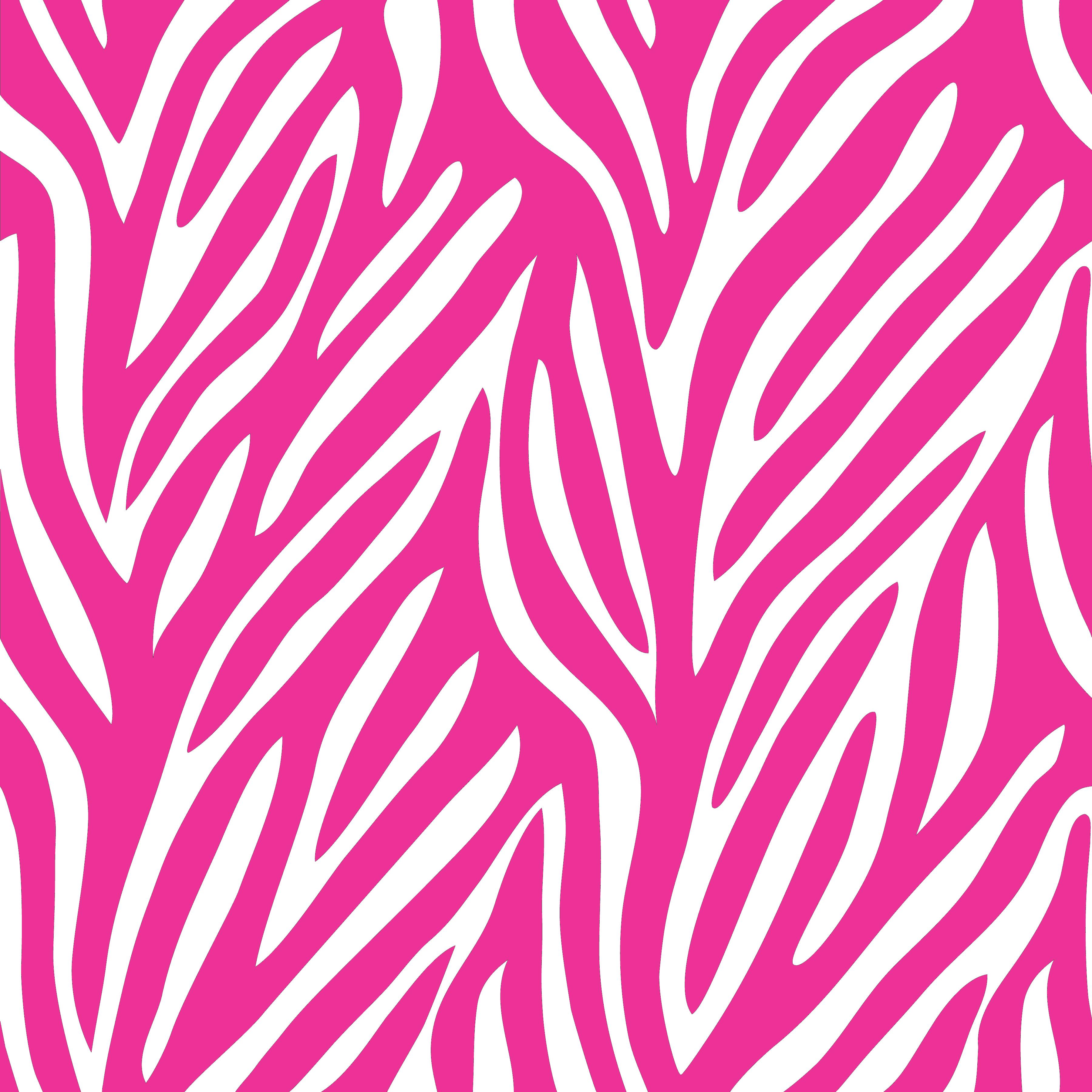 Zebra patterned wallpaper -  White Leopard Wallpaper Wallpapersafari Pink Zebra Wallpaper Pink Zebra Print 6955469