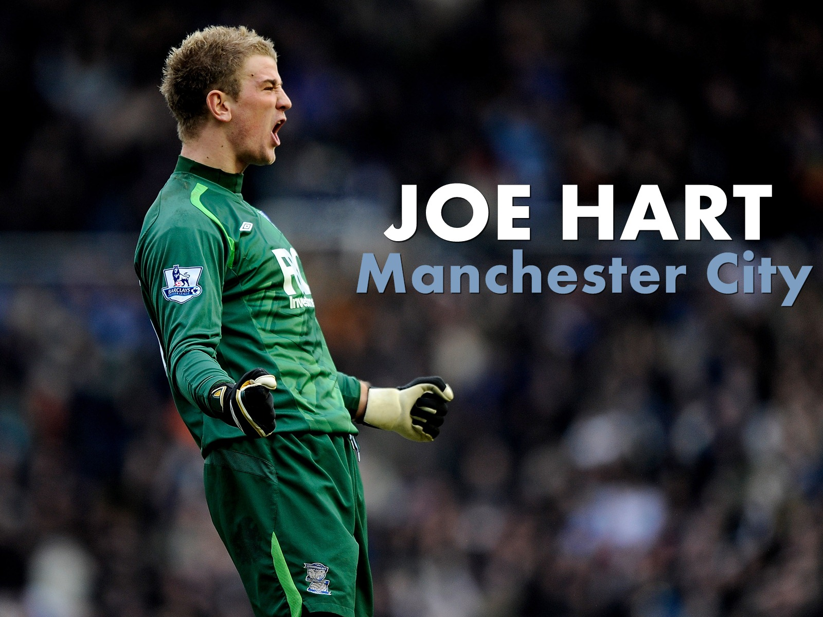 46 ] Joe Hart Wallpaper On WallpaperSafari