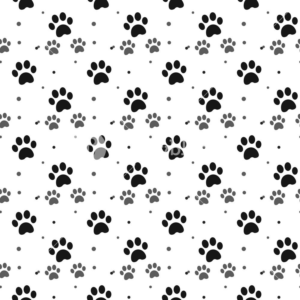 [50+] Paw Background On WallpaperSafari