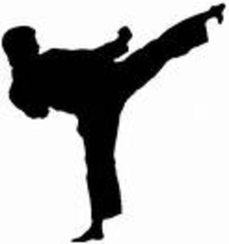 Kenpo Karate HD Walls Find Wallpapers 469x500