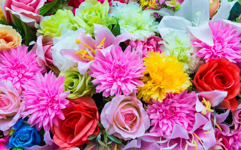 Beautiful colorful flowers wallpaper   ForWallpapercom 2880x1800