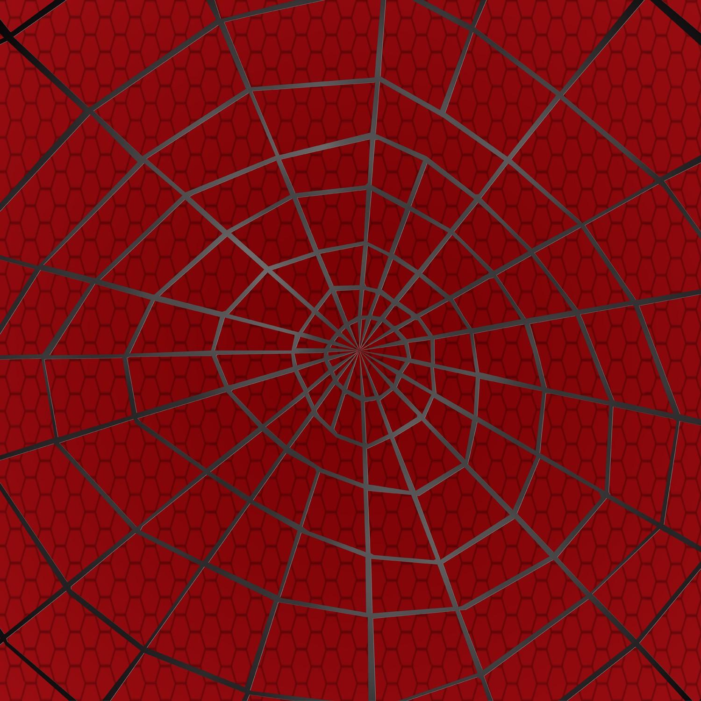 Spider Web Texture Artwork   spiderweb 1500x1500