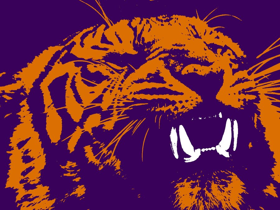 Clemson Tigers Wallpaper Tiger 900x675