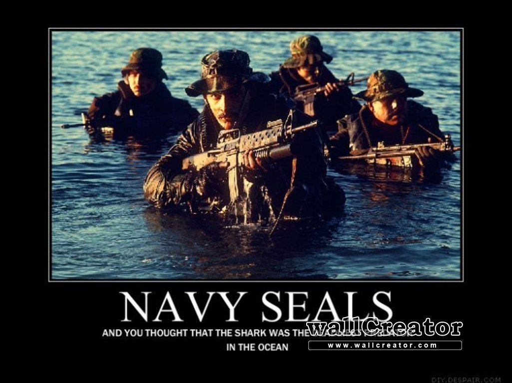 Cool Navy Seal Backgrounds Download this wallpaper 1025x768