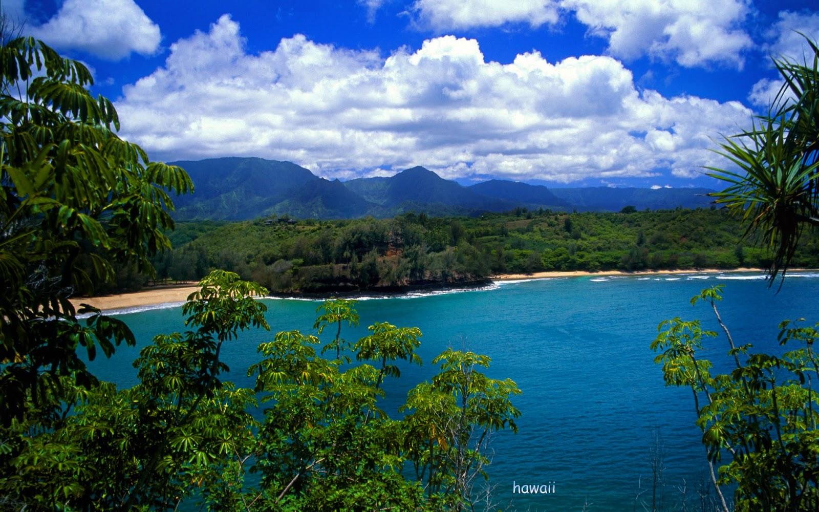 hawaiian island hawaiian islands island island view hawaii 1600x1000