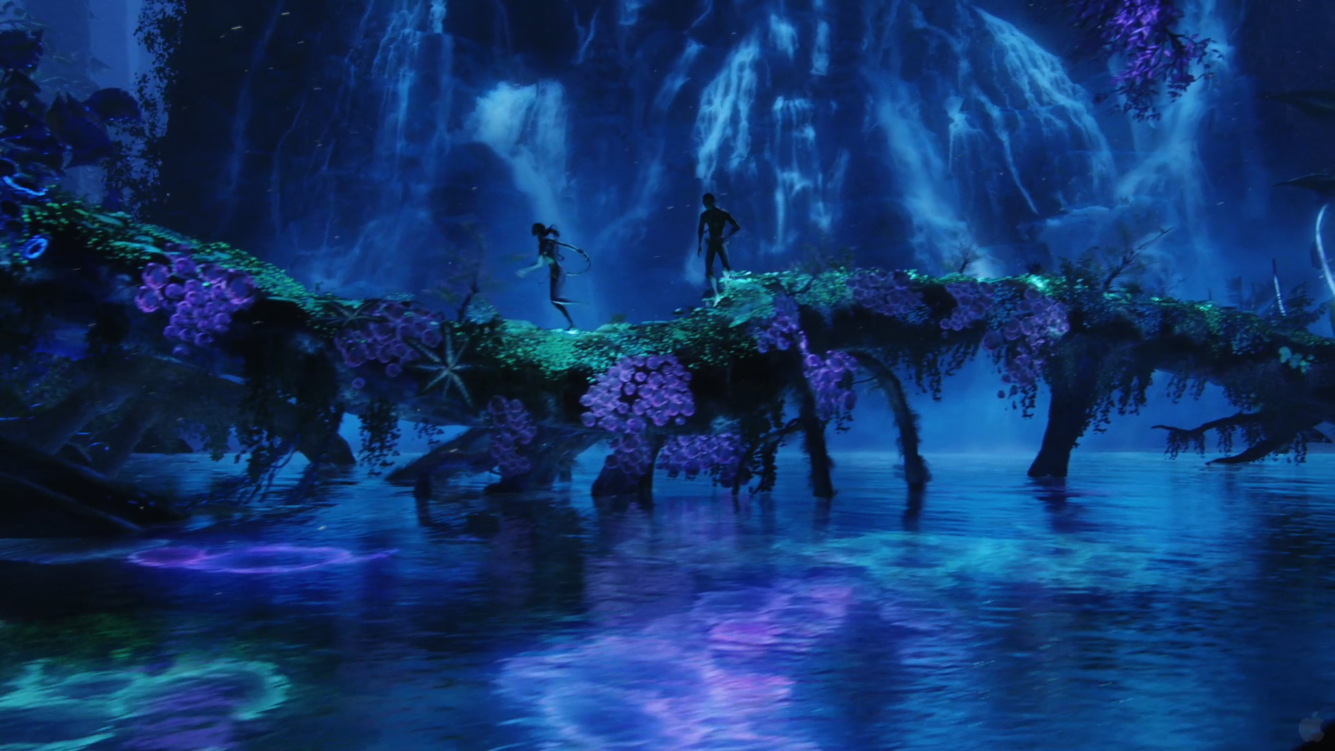 from Avatar wallpaper   Click picture for high resolution HD wallpaper 1920x1080