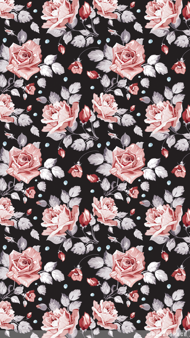 Roses iPhone Wallpaper is very easy Just click download wallpaper 640x1136
