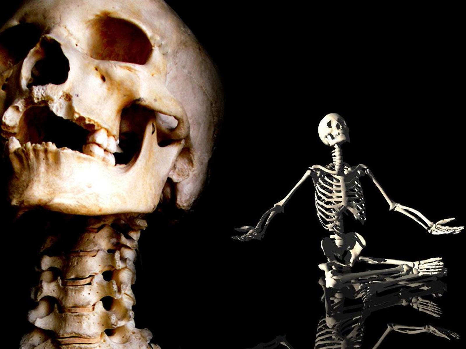Halloween Skeleton Wallpaper.Free Download Wallpapers Skeleton Wallpapers 1600x1200 For