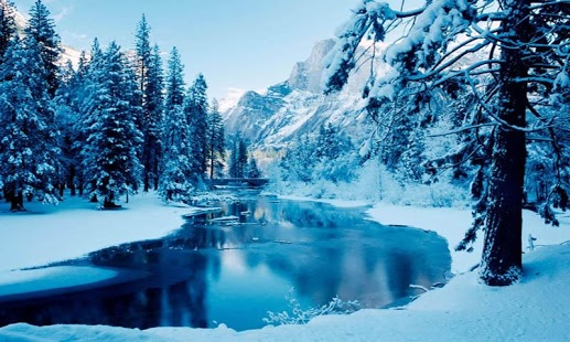 Beautiful Winter Live Wallpapers with 19 cool beautiful and 517x310
