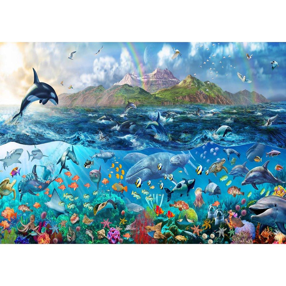 Free Download Tropical Underwater Ocean Sea Life Wallpaper Mural