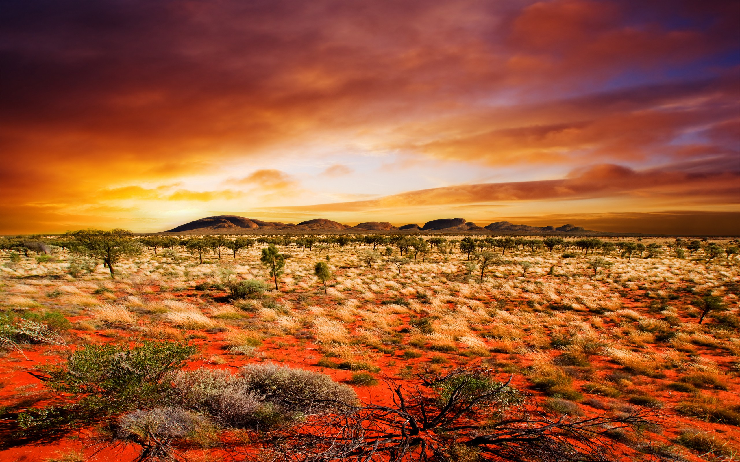 519 <b>Desert</b> HD Wallpapers | <b>Backgrounds</b> - Wallpaper Abyss