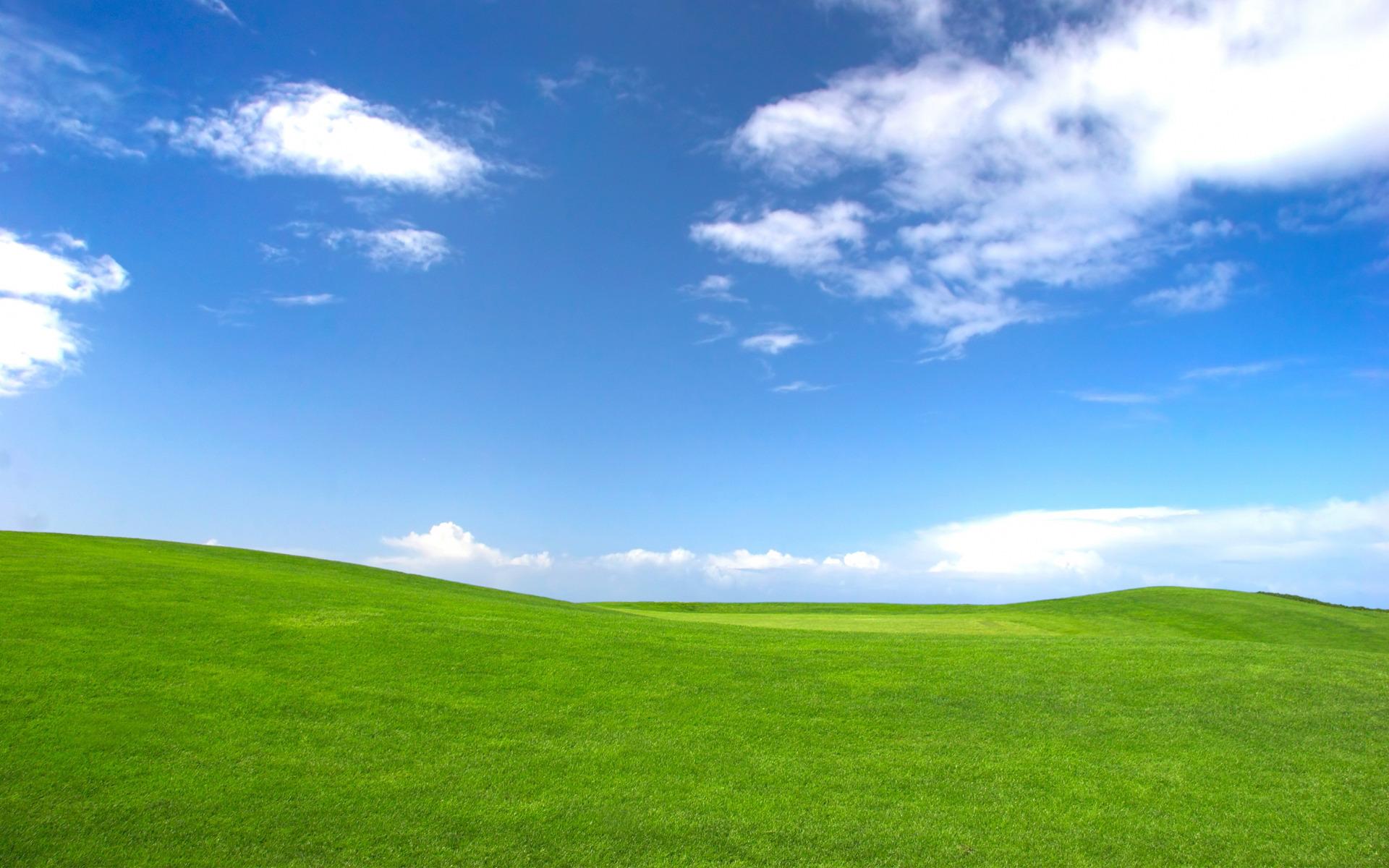 Grass And Sky Wallpaper