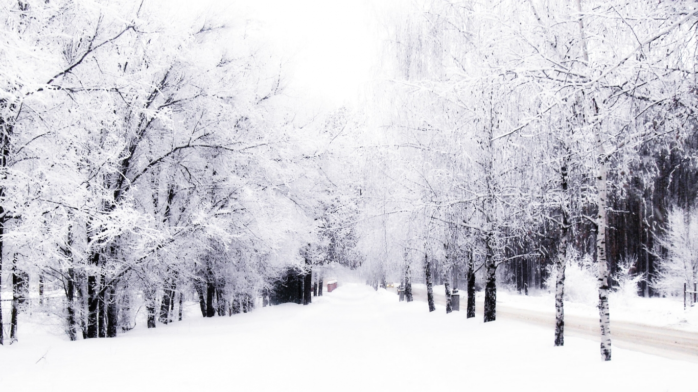 download winter wallpaper download which is under the winter 1366x768