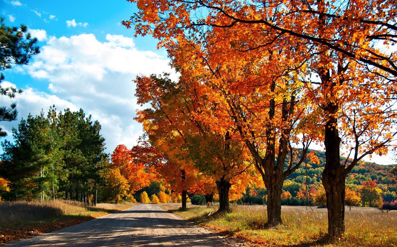1440x900 Autumn Road desktop PC and Mac wallpaper 1440x900