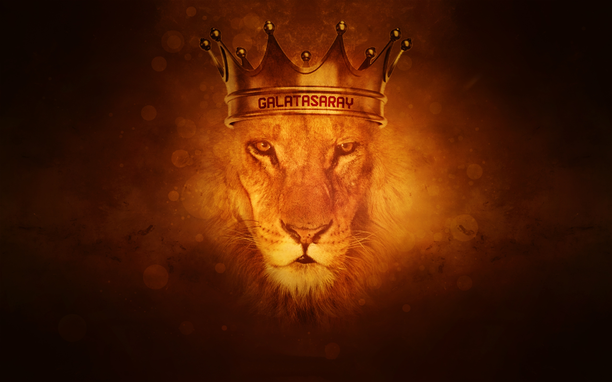 Most Inspiring Wallpaper Logo Lion - LDGrUf  Perfect Image Reference_366112.jpg