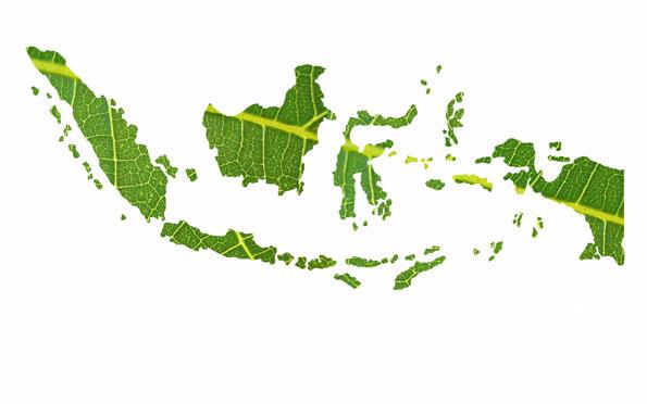 tutorial membuat Peta Indonesia dengan tekstur daun menggunakan 595x372