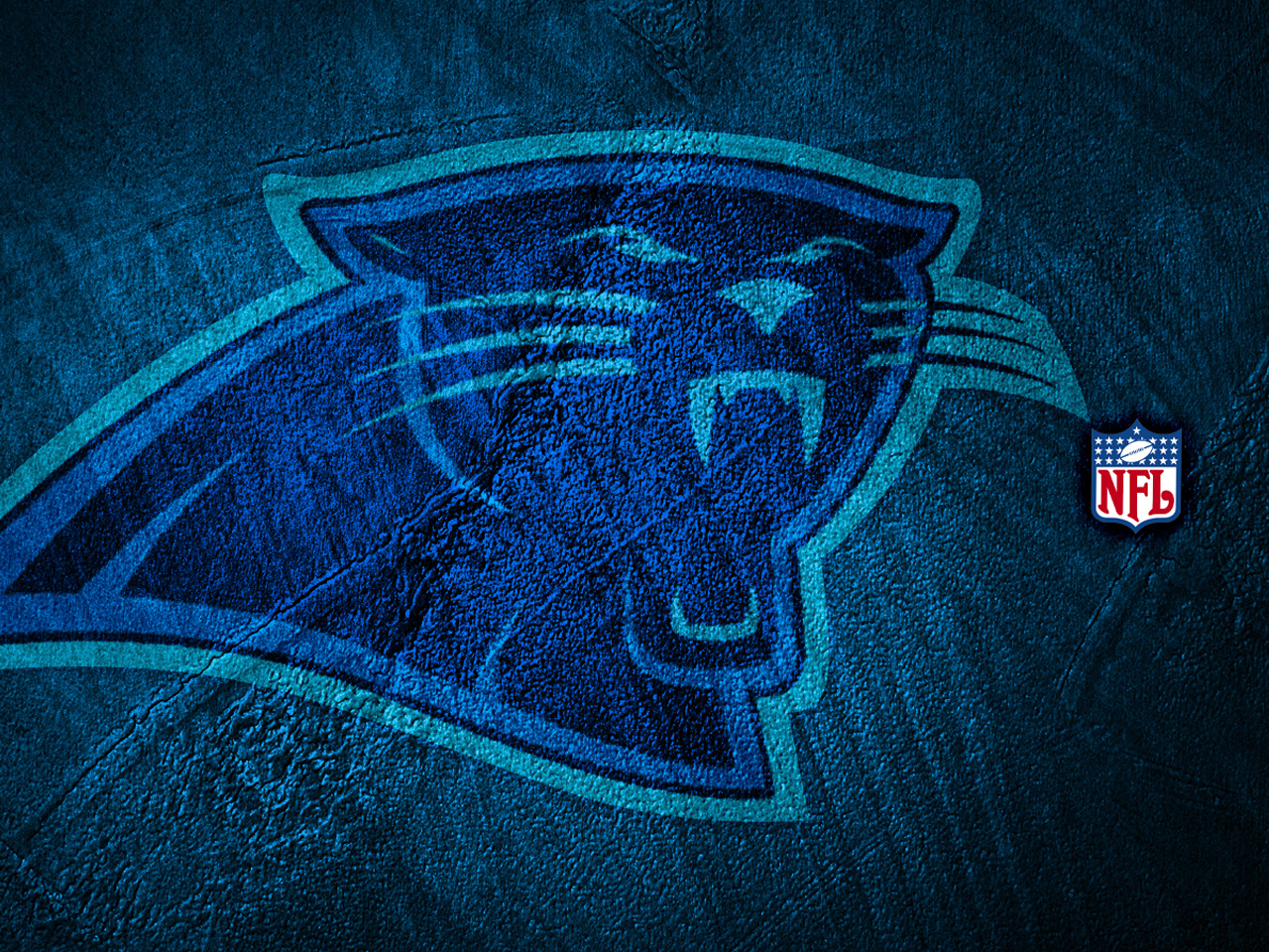 South Carolina Games Panthers Nfl Football 1088009 With Resolutions 1280x960