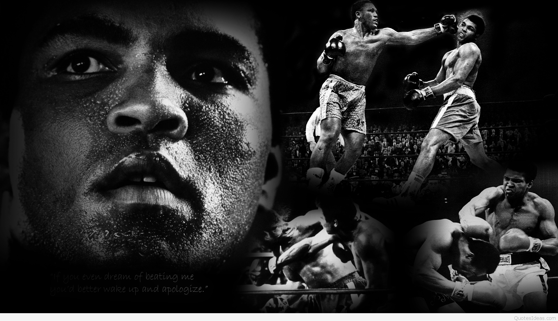 Muhammad Ali Quotes Wallpapers HD 1920x1107