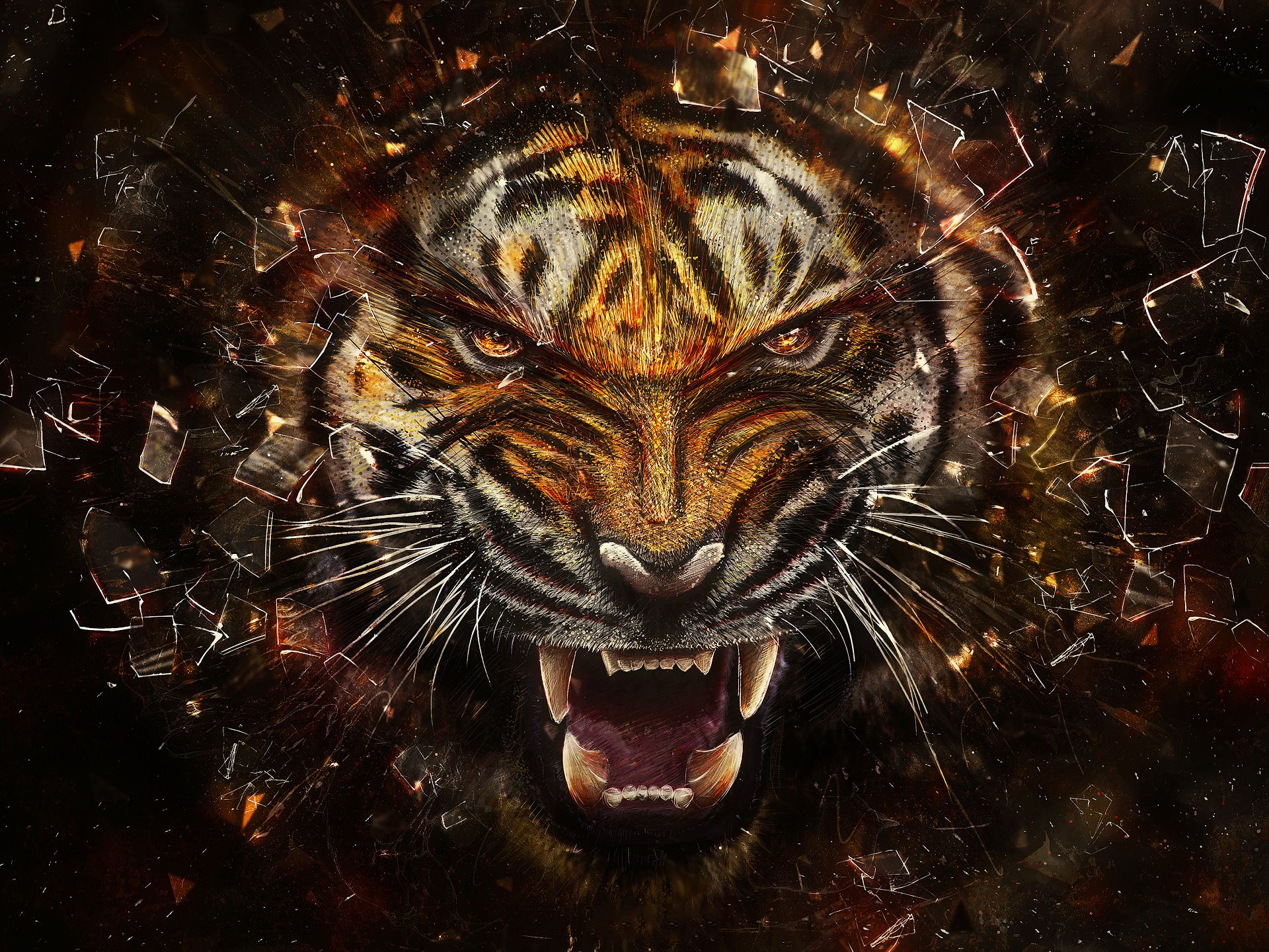 Angry Tiger   Tigers Wallpaper 31737545 1920x1440