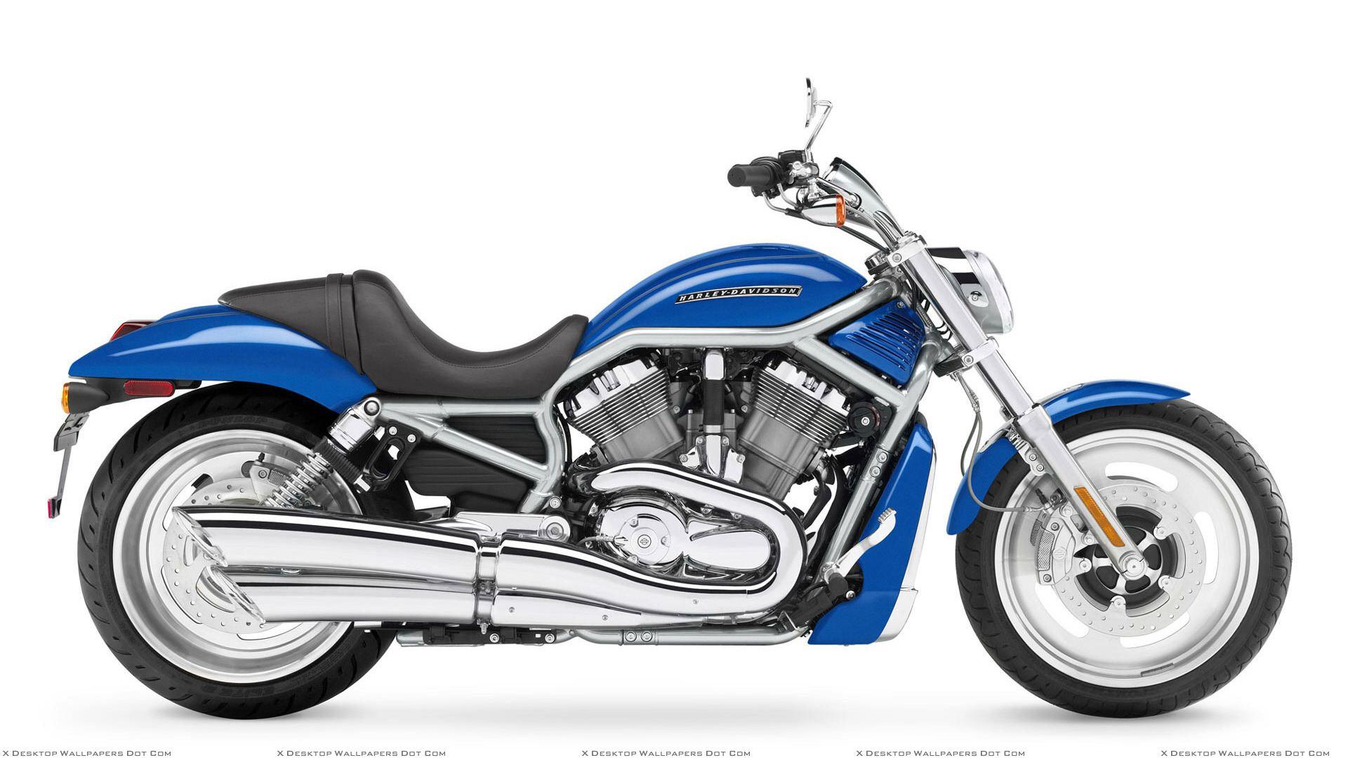 Blue Harley Davidson Vrscf V Rod Muscle Side Pic Wallpaper 1920x1080