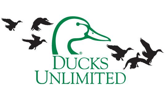 ducks unlimited bear river ducks unlimited 546x314