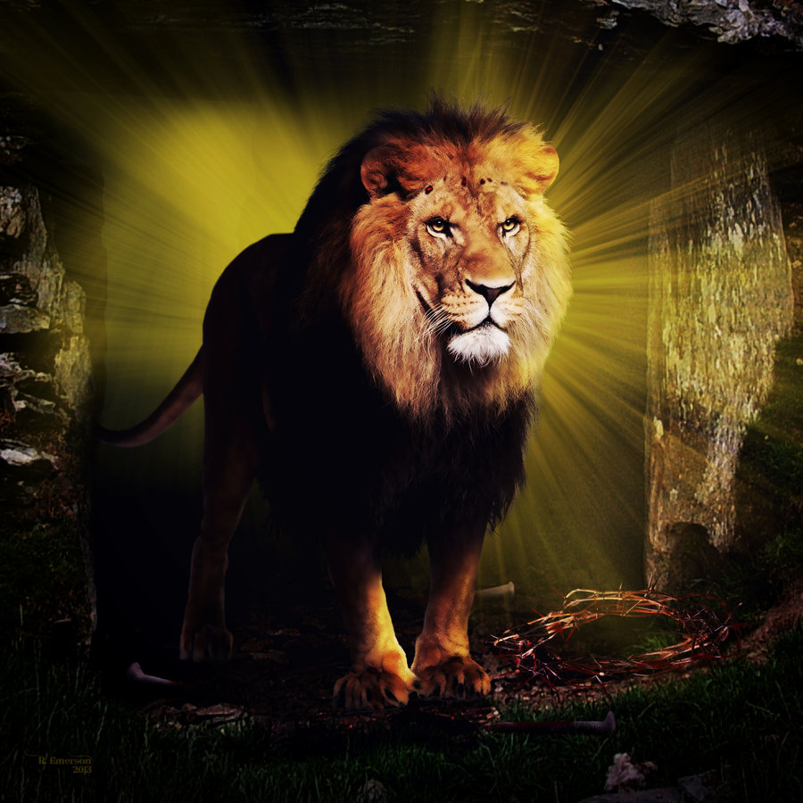 The Lion of Judah by robhas1left 900x900