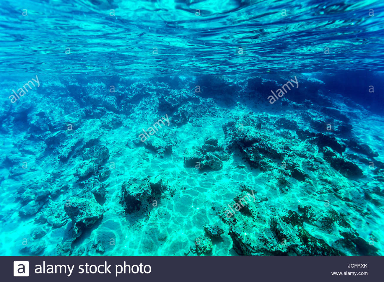 Beautiful seabed background gorgeous sea bottom through 1300x956