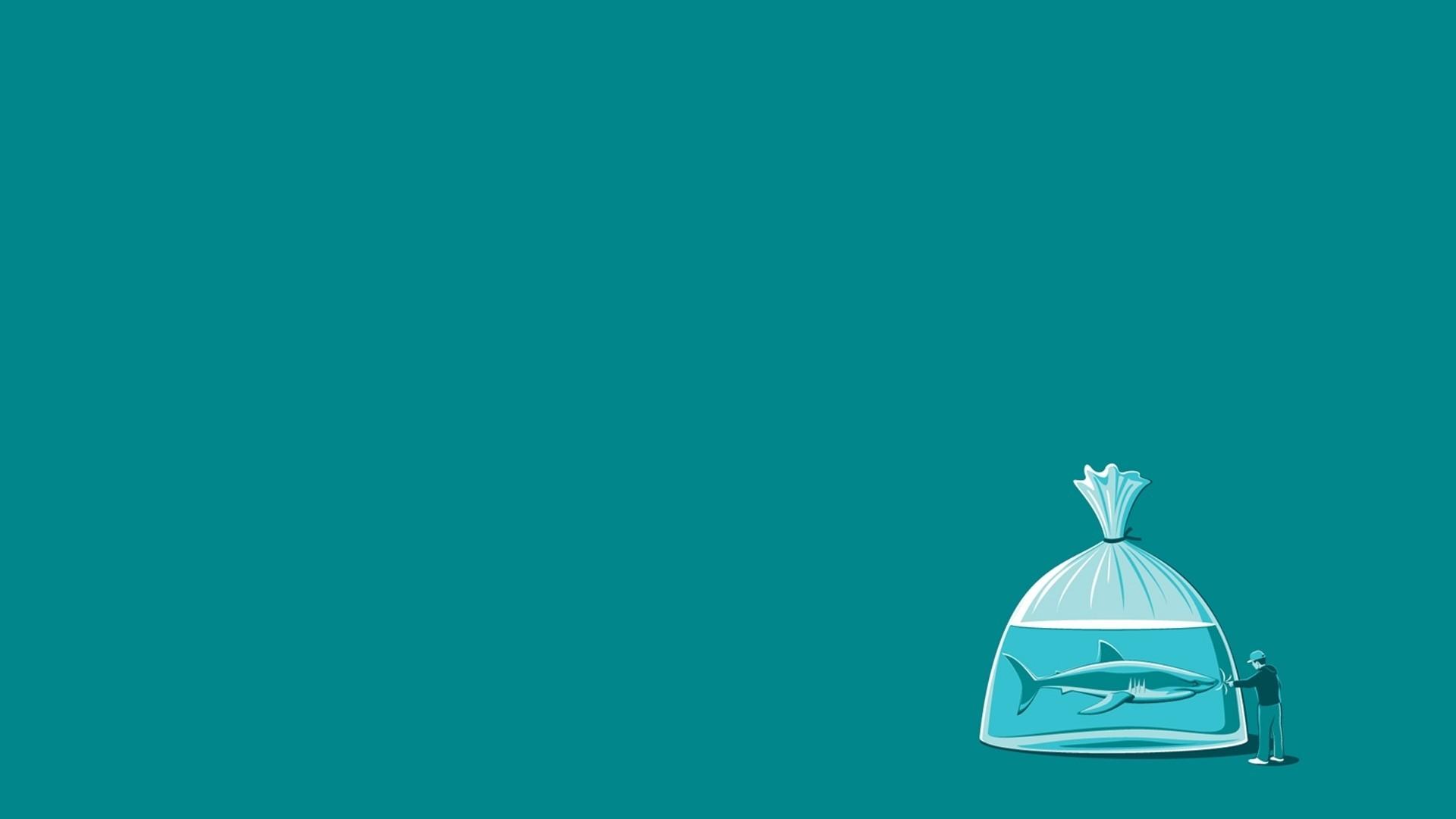 Humorous Wallpapers For Desktop Wallpapertag: Awesome Funny Shark HD Wallpaper