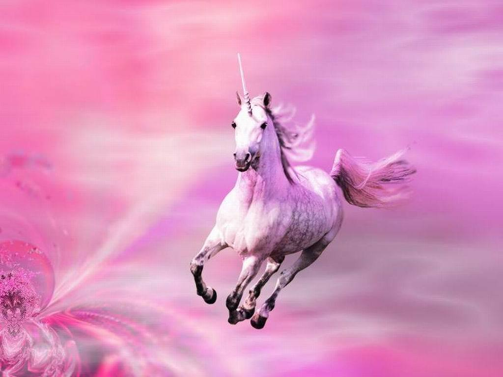 Unicorns images Pink Shimmers HD wallpaper and background 1024x768