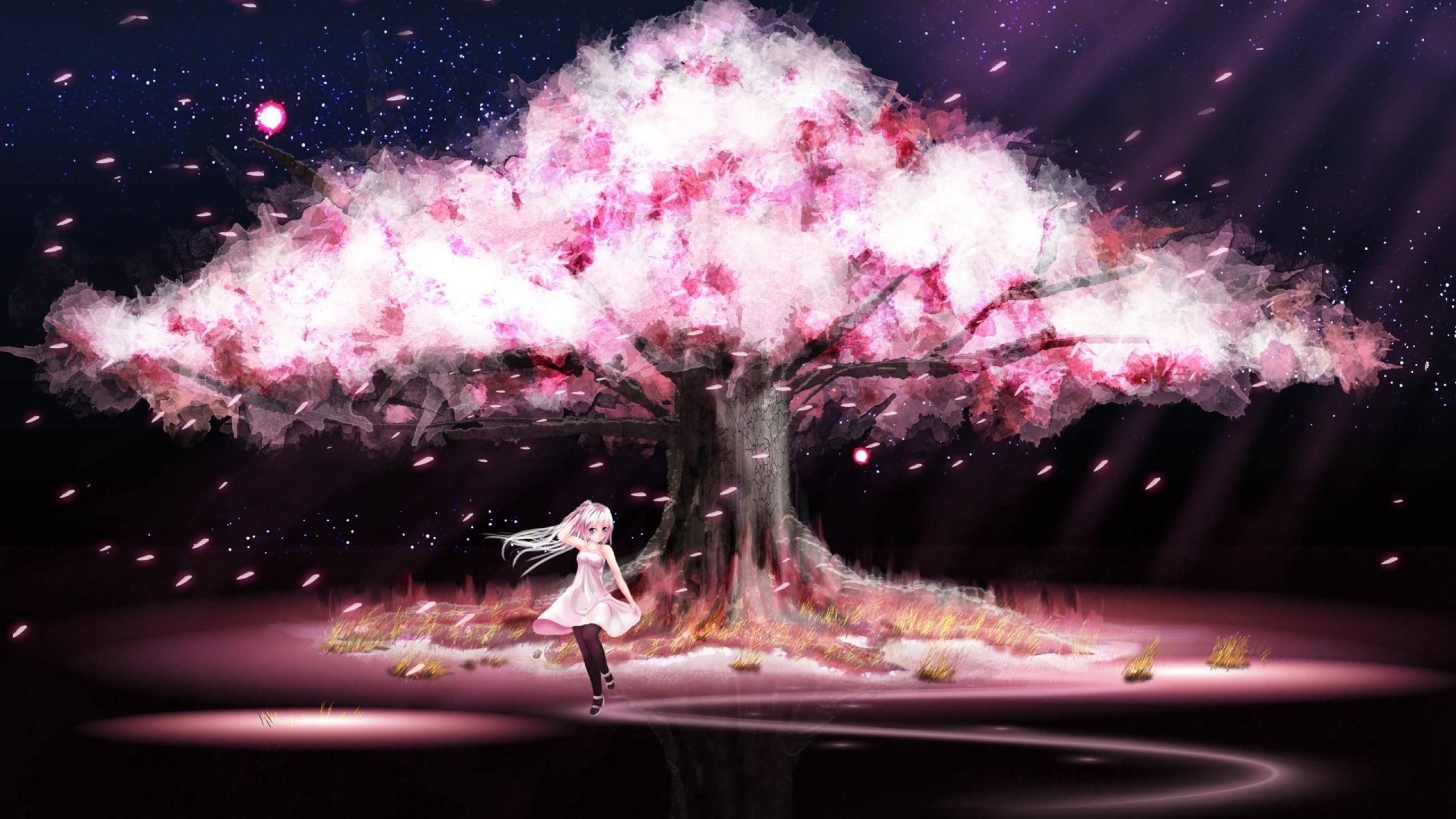 Sakura Cherry Blossoms Tree Nature Anime Trees Jootix Wallpaper with 2560x1440