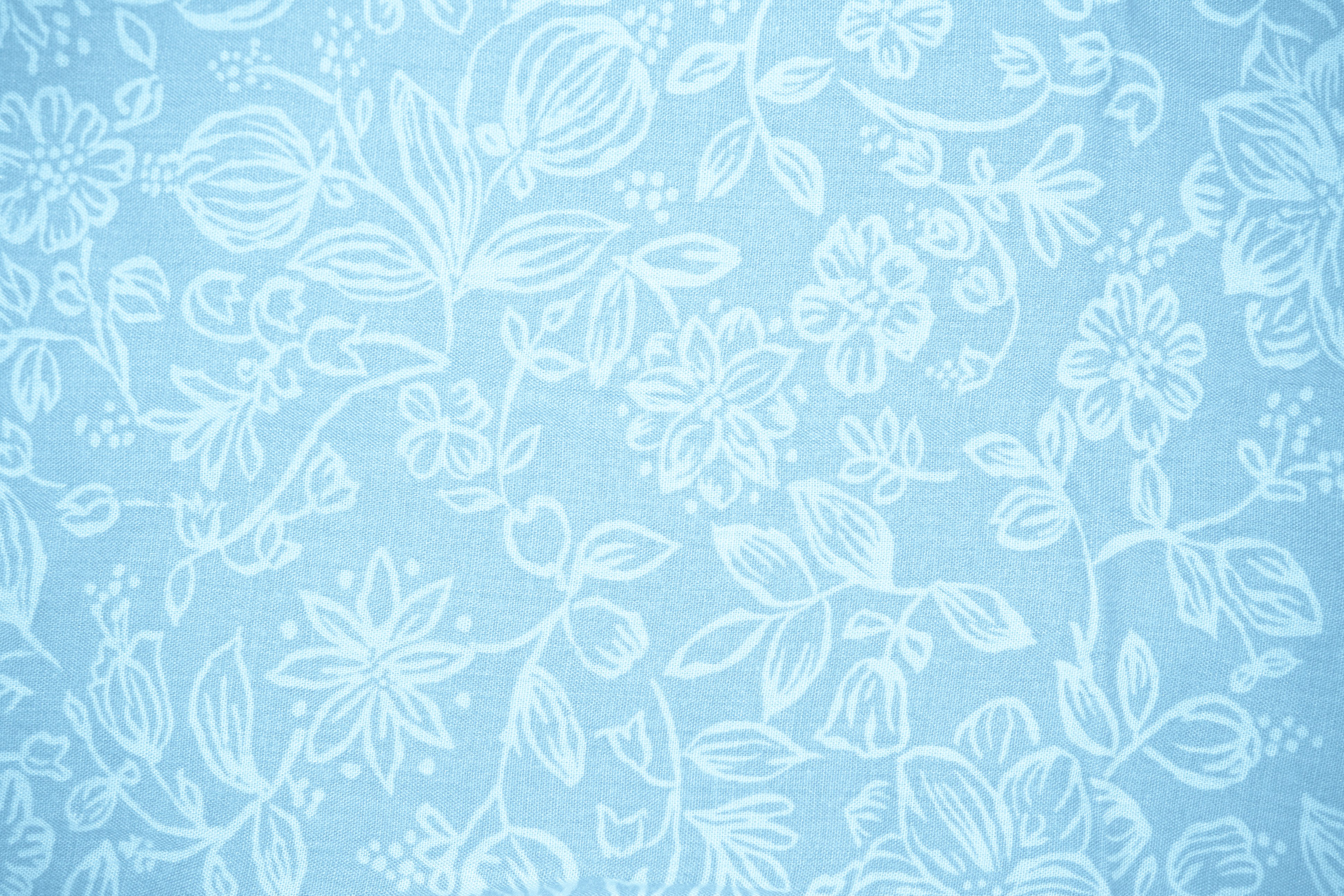 Free Download Baby Blue Fabric With Floral Pattern Texture Picture