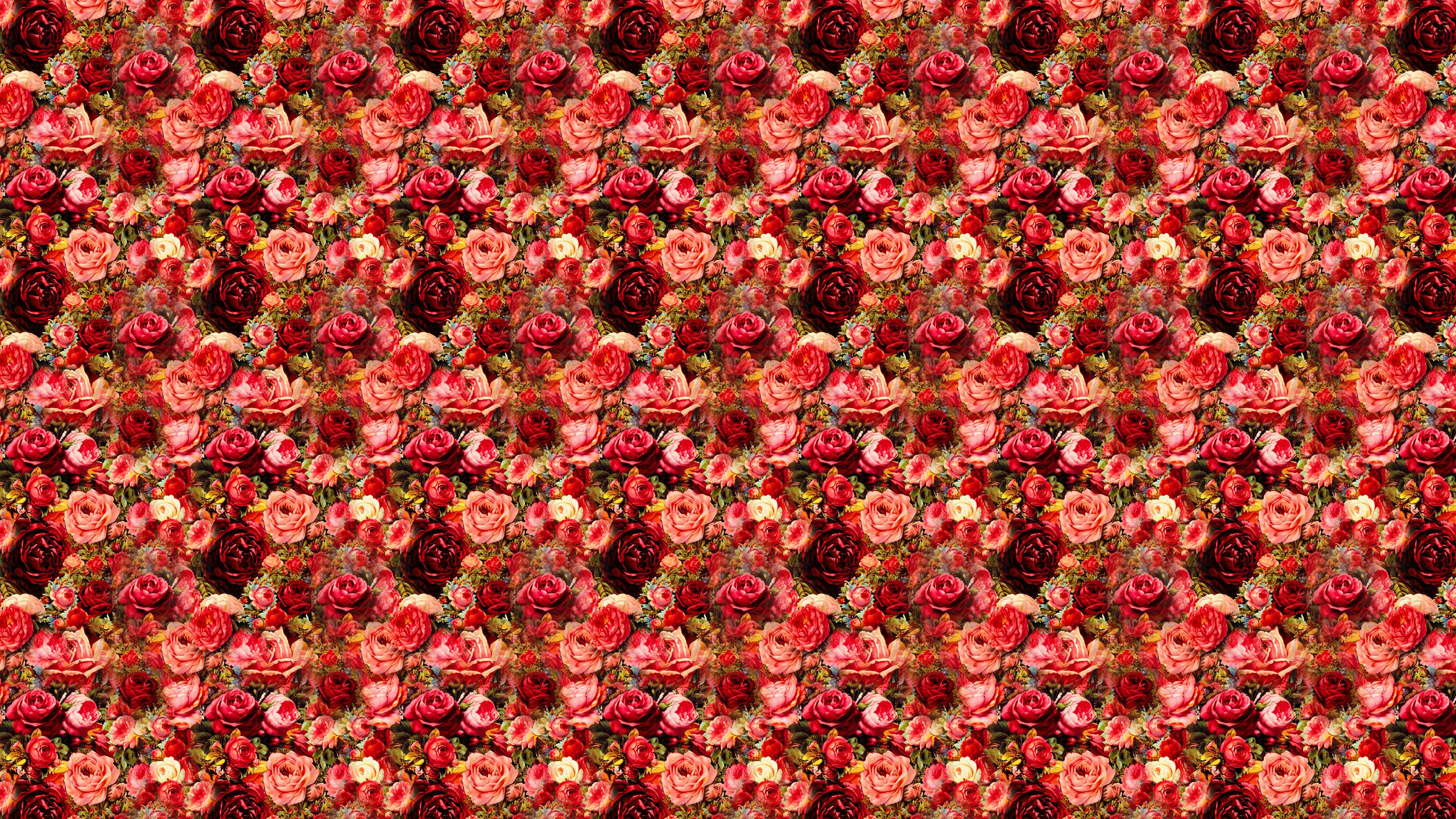 Simple Rose Garden: Rose Garden Wallpaper Desktops